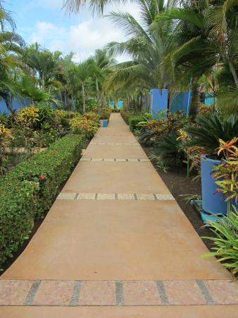 Alma del Pacifico Beach Hotel & Spa: Beach Hotel Costa Rica