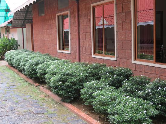 Rayirath Heritage Ayur Resort: Towards Garden