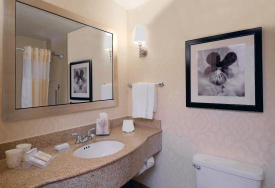 Hilton Garden Inn Chicago North Shore/Evanston : Presidential Suite - Bathroom