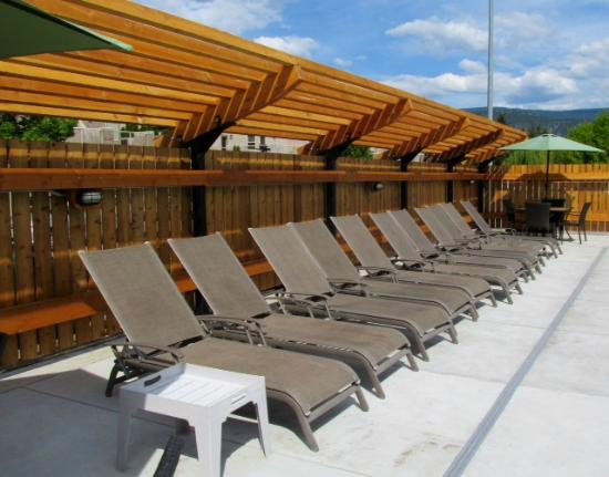 Bowmont Motel: Time to lounge by the pool