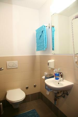 Auberge de jeunesse Lugano Savosa : WC / Toilette