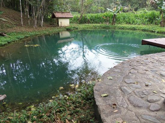 Ótima piscina natural e uma bela vista do céu