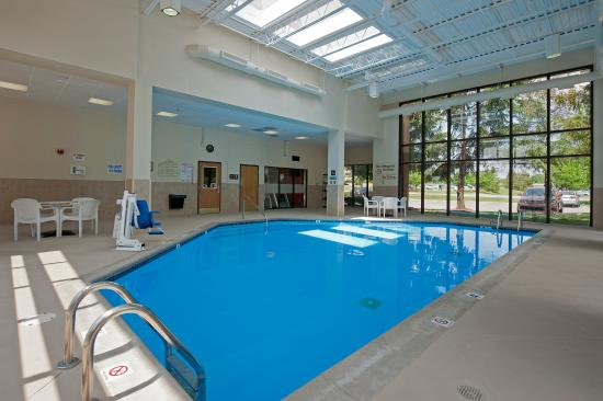 Hampton Inn Ann Arbor - North: Indoor Pool