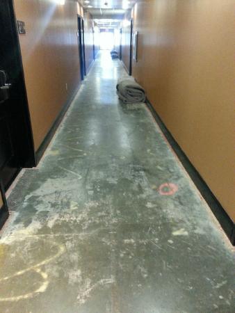 Hampton Inn & Suites Indianapolis/Brownsburg: Main hallway of the 2nd floor