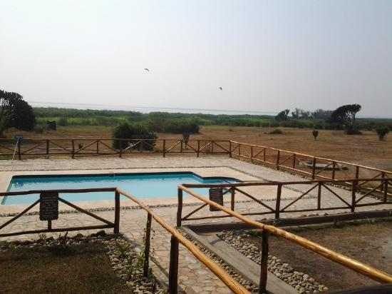 Swimming pool area ihamba safari lodge picture of ihamba for Western pool show 2015