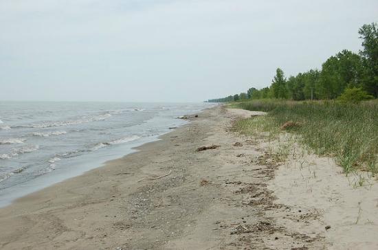 rondeau beach picture of rondeau provincial park. Black Bedroom Furniture Sets. Home Design Ideas