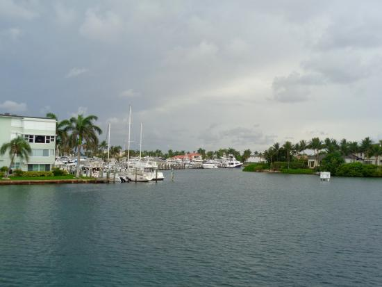 Serenity Yacht Cruises: View from upper deck
