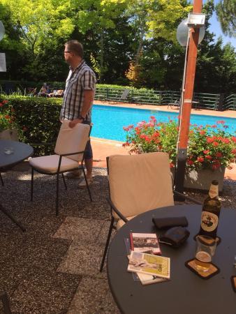 Park Hotel Chianti: Skimming pool