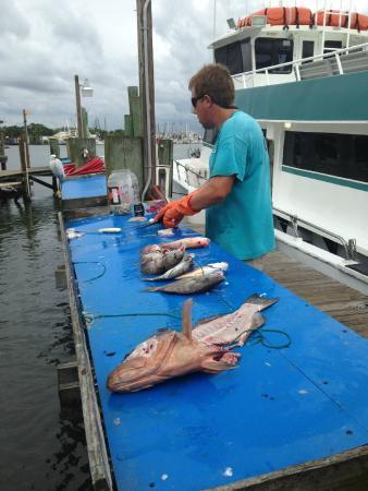 Fish picture of sea trek fishing boat fort myers beach for Deep sea fishing ft myers