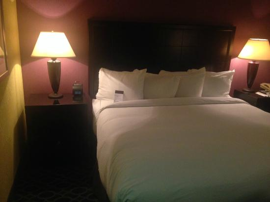 DoubleTree by Hilton Richmond-Midlothian: Bed