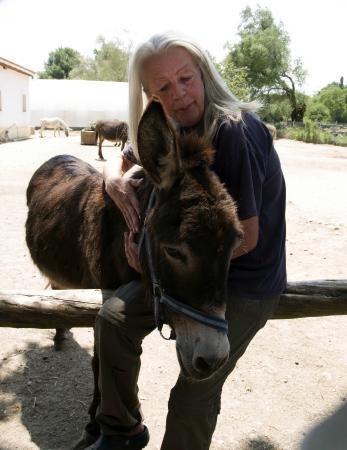 Judy met één van haar ezels - Picture of Corfu Donkey ...