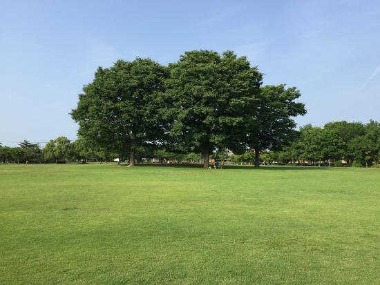 Matsusaka Suzu no Mori Park