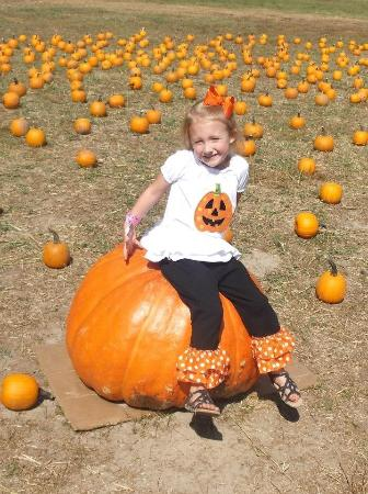 you can pick a pumpkin from the pumpkin patch to take home