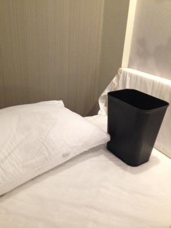 Courtyard Scranton Wilkes-Barre: Wet pillow & trash catching water