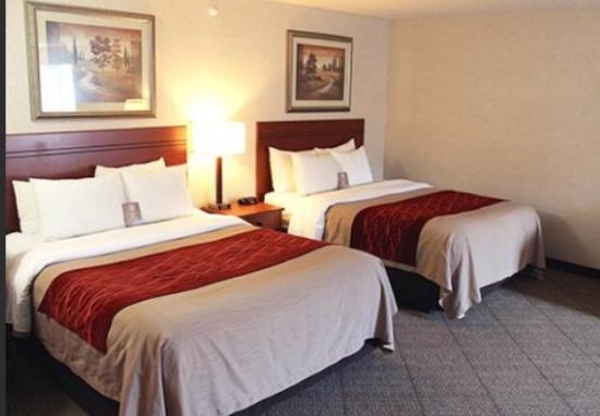 Comfort Inn at the Zoo: Up to date rooms, nice mattresses & linens.