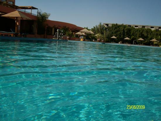 Palmera Beach Resort: حمام السباحة