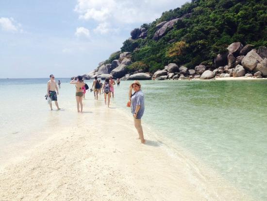 كوه تاو كورال جراند ريزورت: เกาะนางยวน