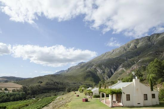 Bushmanspad Estate : Beautiful views from the cottage