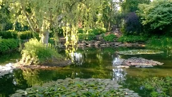 The Oaksmere: pond within grounds