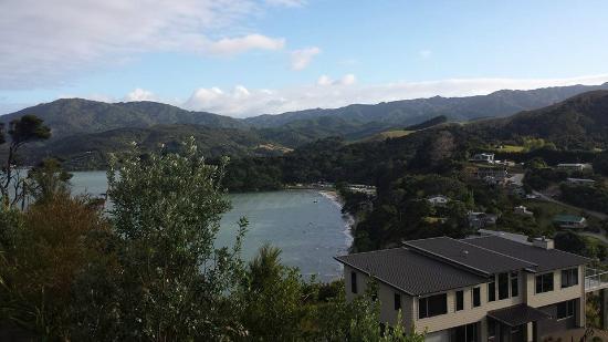 Coromandel Seaview Motel Style B&B: View from deck