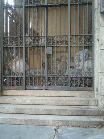 Palazzo del Capitano di Giustizia: Il deposito dei rifiuti