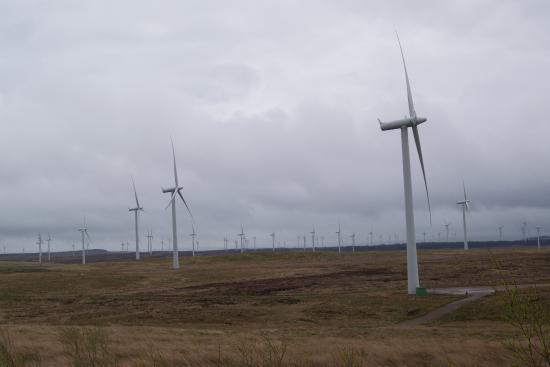 Whitelee Wind Farm Visitor Centre: Windfarm 2