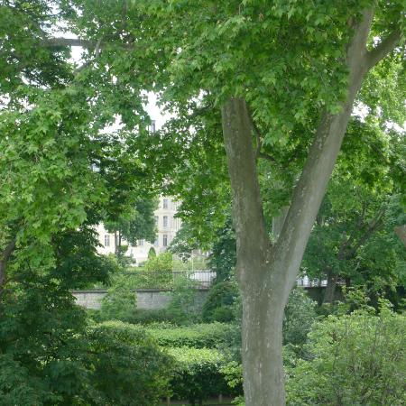 Hotel de Suede St. Germain: From my room