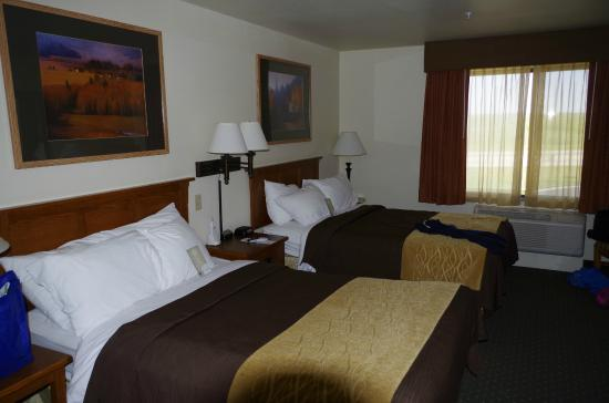 Comfort Inn & Suites: Dbl Twin