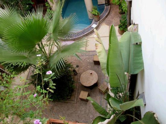 Riad Al Faras: patio