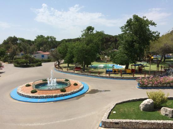 Camping Village Pino Mare: Кемпинг