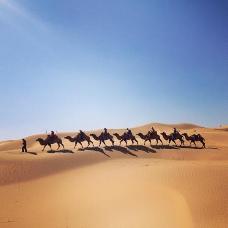 Dalate Qi, Kina: Camel ride through the sands