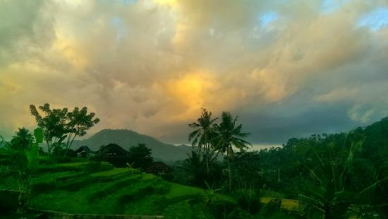 Arta Nadi Villa: View from room 05, sun rising