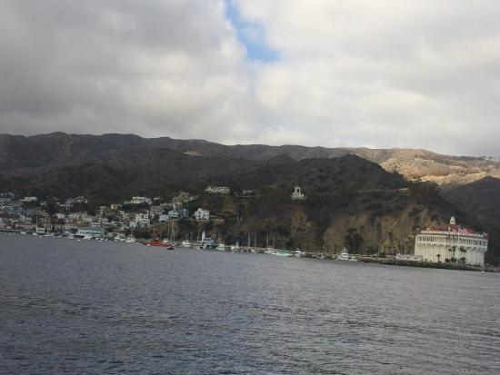 Catalina Island Visitors Bureau : Catalina Island