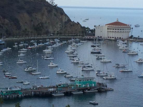 Catalina Island Chamber of Commerce & Visitors Bureau: Catalina Island, desde arriba