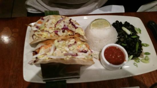 lazy dog cafe: fish tacos