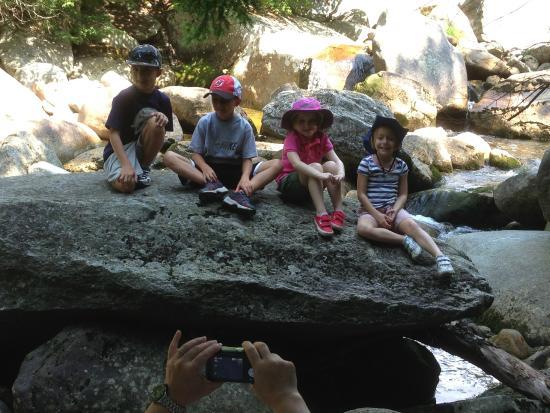 Step Falls Preserve Hiking Trail : Step Falls - FUN!