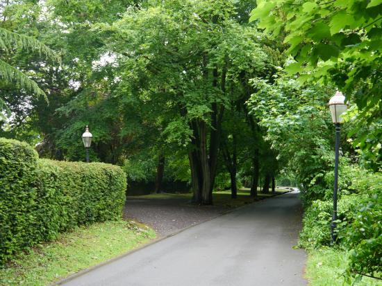 โคเวนทรี, UK: a walk behind the hotel