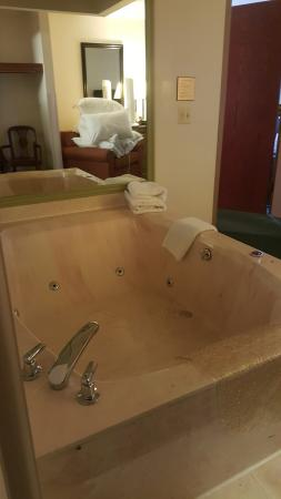 Holiday Inn Express Birch Run (Frankenmuth Area): Jacuzzi