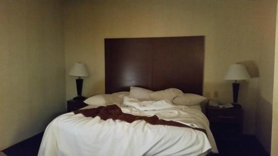 Comfort Suites Columbia Gateway : bedroom