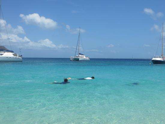 Oyster Pond, St. Martin/St. Maarten: Snorkeling