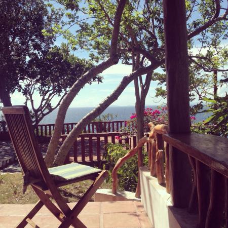 Punta Del Este : photo0.jpg