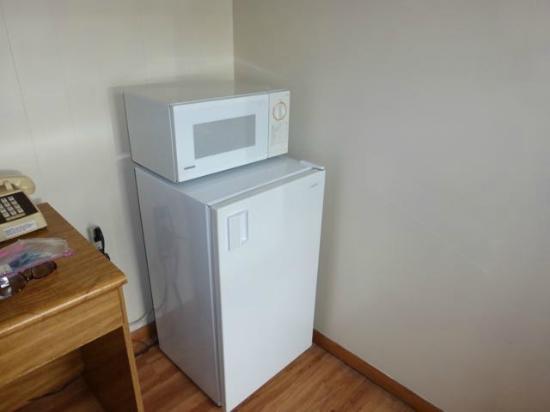 Skyline Motel: Refrigerator and microwave