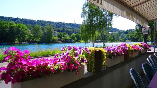 Restaurant Rhyhalde: Blick von der Terasse zum Rhein