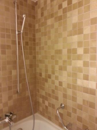Gstaaderhof Swiss Quality Hotel: Chuveiro e Banheira - com direito a um banho de sais como do mar morto (à parte)