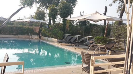 Ottima Lochescion Picture Of Hotel Central Park Marina Di Pietrasanta Tripadvisor