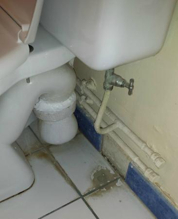 Les Gens de Mer : Dirt and limescale under toilet