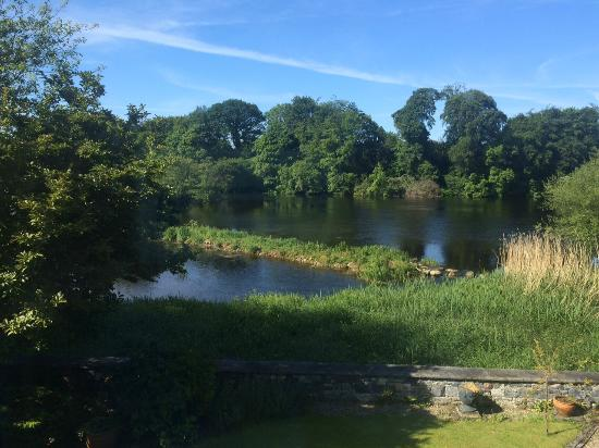 Castleconnell, Irlanda: The view from my bedroom