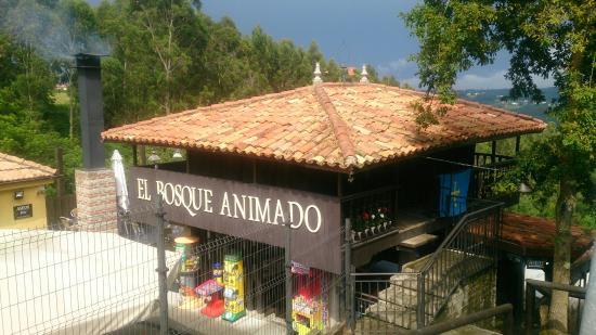 El Bosque Animado Picture Of El Bosque Animado Muros Del Nalon Tripadvisor