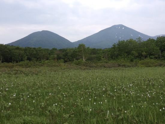 Tashirotai Wetland