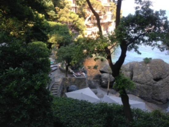 beach club picture of hotel piccolo portofino portofino